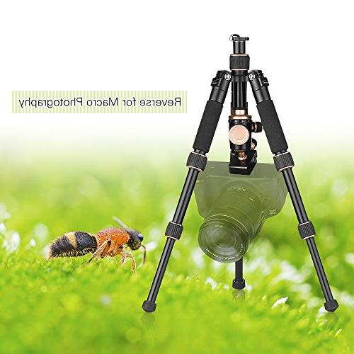 Andoer 53cm/21 Portable Mini Tripod Ball Plate Sony DSLR