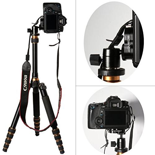 TOAZOE TQ001 Release Plate + System Monopod with